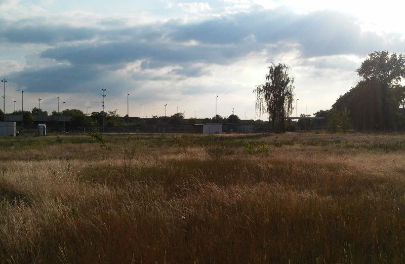 Wo wird Leerstand schon genutzt? Zum Beispiel in Mannheim